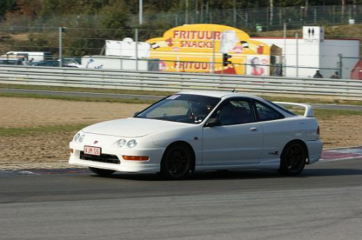 Championship White Belgian ITR at the track
