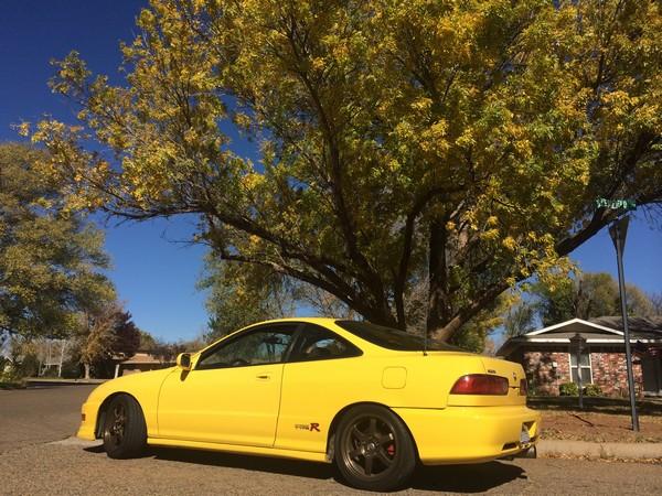 Phoenix Yellow ITR with no spoiler