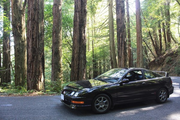 Bone stock 2001 nbp ITR redwoods