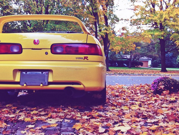 2001 Phoenix Yellow Integra type-R Back/Rear